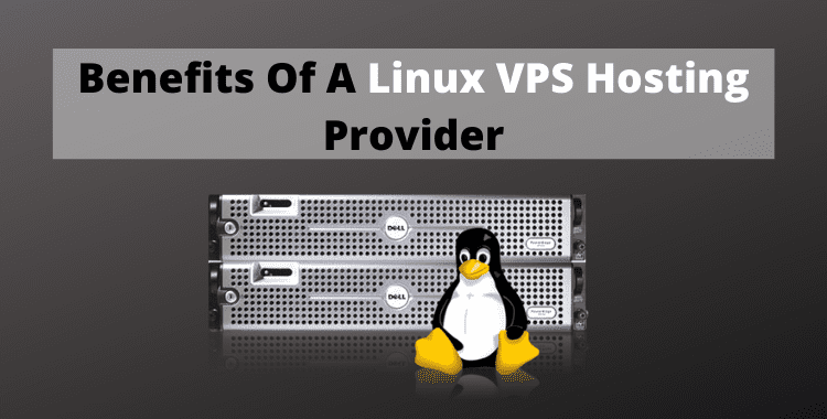 It is one of the best leading web hosting and domain registration companies based in India that provides you Linux VPS hosting plans to see benefits of Linux VPS hosting.